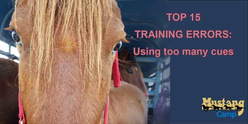 Using too many cues is a common animal training error